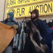 Fairbanks Fur Auction