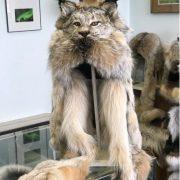 Lynx Head Hat $525