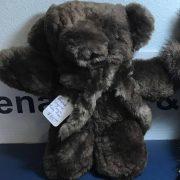 Teddy Bear Needs Cropped